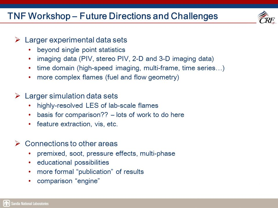 TNF Workshop – Future Directions and Challenges