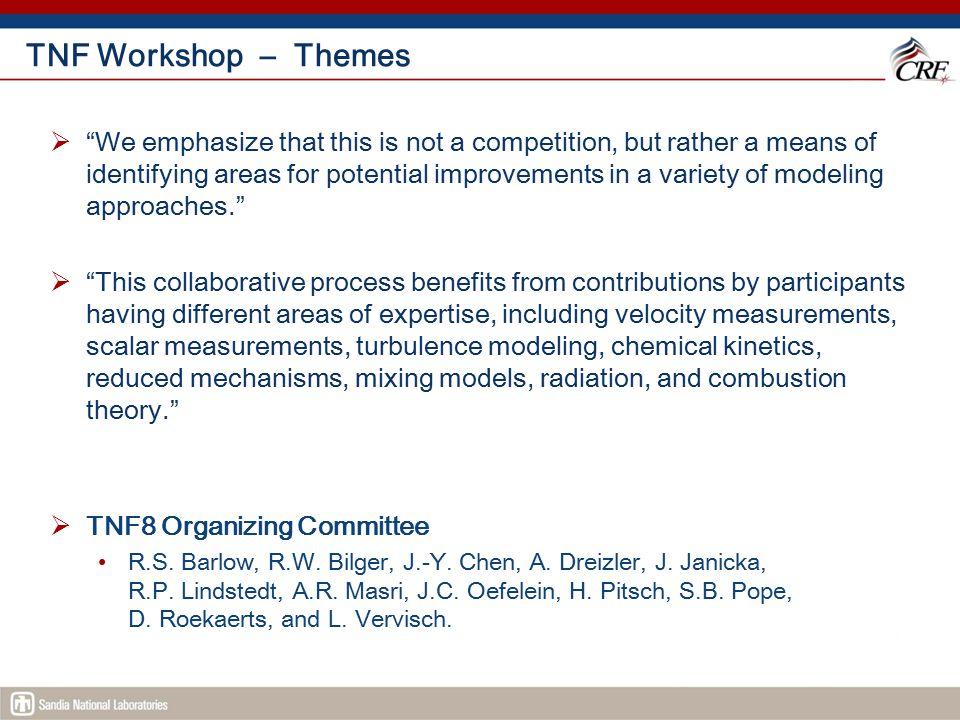 TNF Workshop – Themes