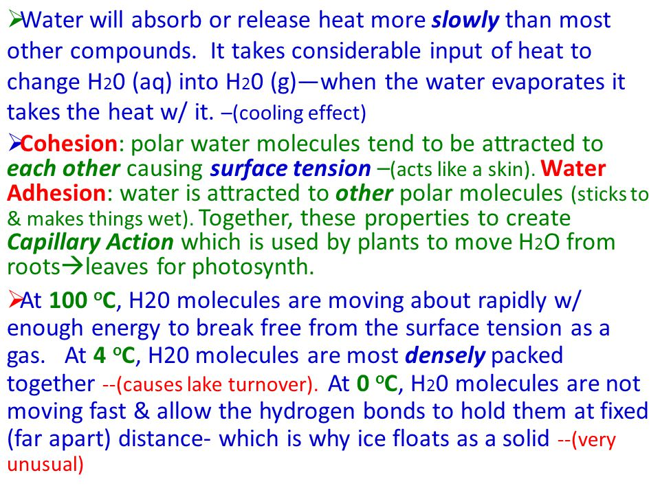 Water will absorb or release heat more slowly than most other compounds. It takes considerable input of heat to change H20 (aq) into H20 (g)—when the water evaporates it takes the heat w/ it. –(cooling effect)