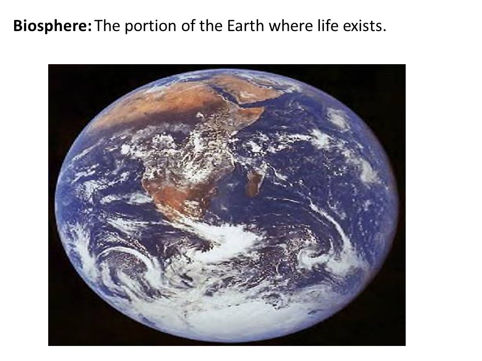 Biosphere: The portion of the Earth where life exists.