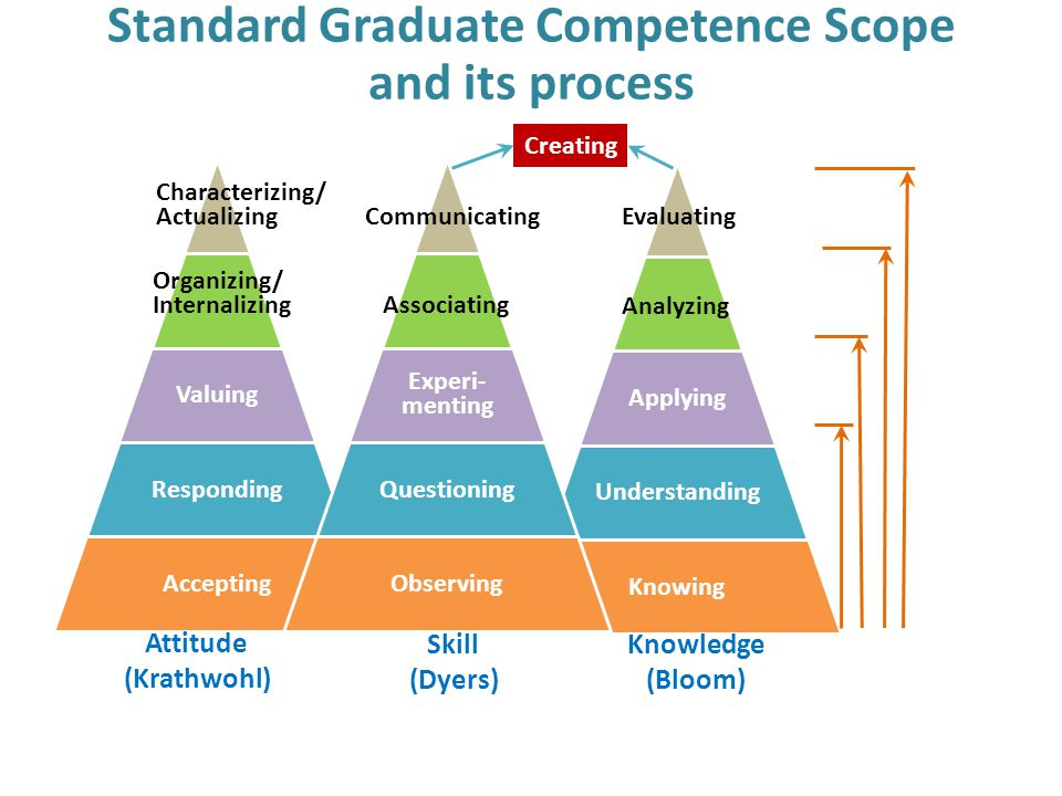 Standard Graduate Competence Scope