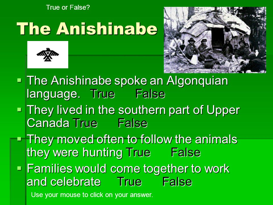 The Anishinabe The Anishinabe spoke an Algonquian language. True False