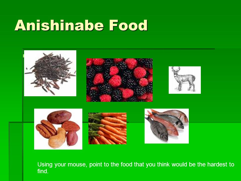 Anishinabe Food Using your mouse, point to the food that you think would be the hardest to find.