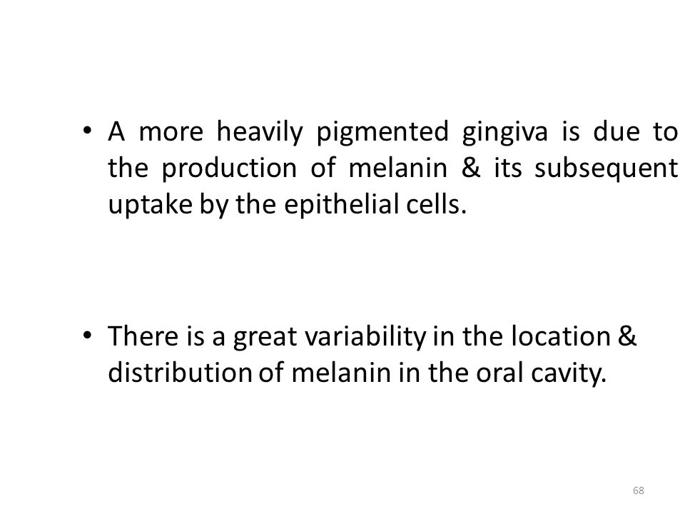 A more heavily pigmented gingiva is due to the production of melanin & its subsequent uptake by the epithelial cells.
