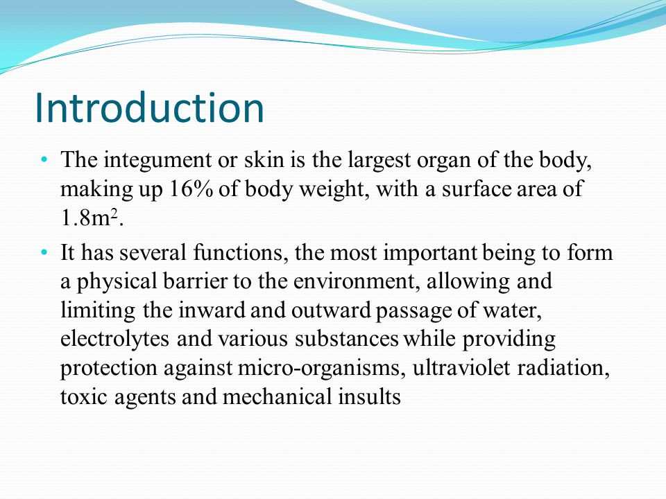 Introduction The integument or skin is the largest organ of the body, making up 16% of body weight, with a surface area of 1.8m2.