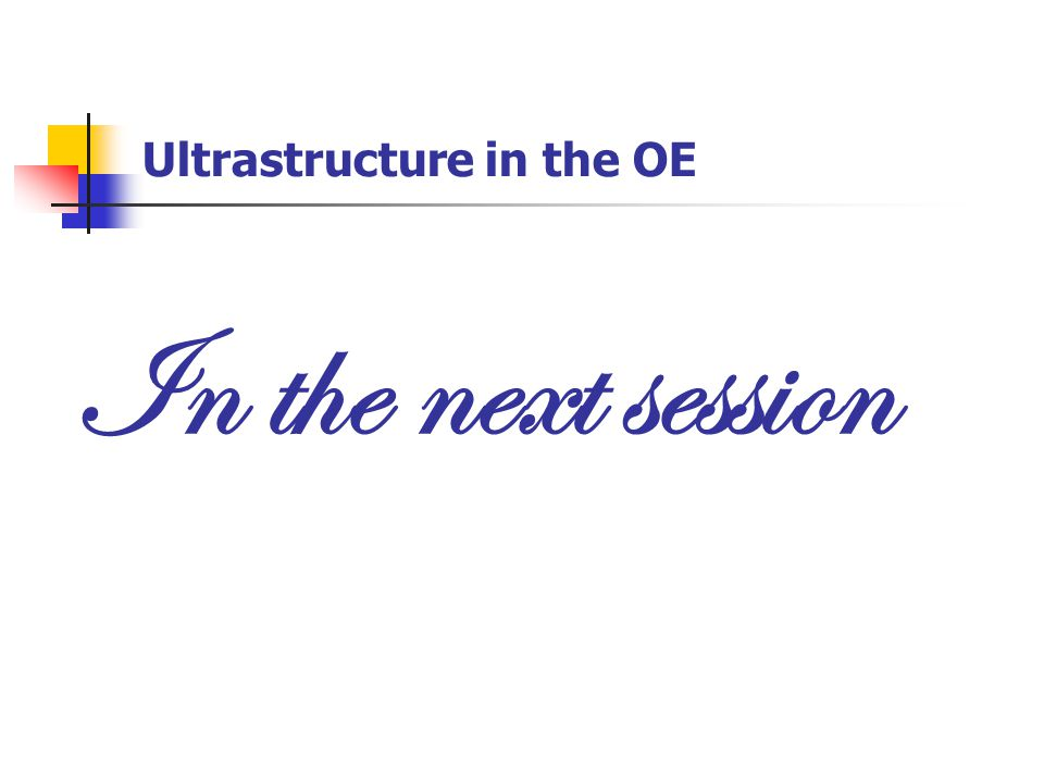 Ultrastructure in the OE