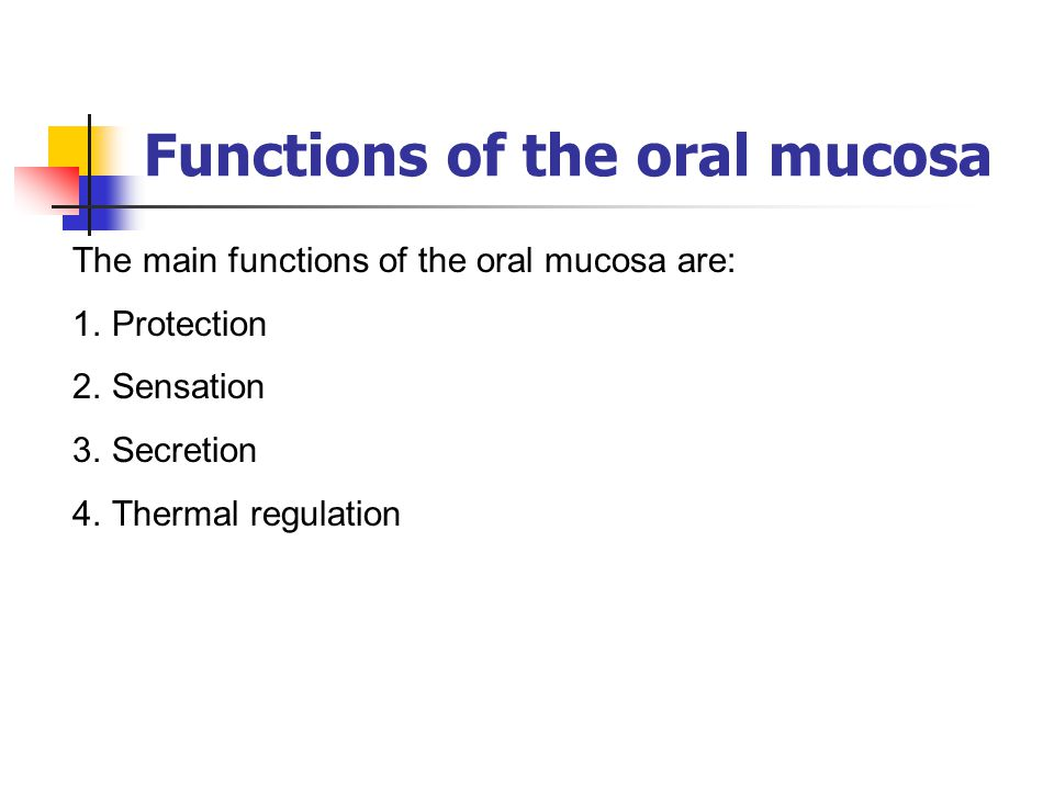 Functions of the oral mucosa