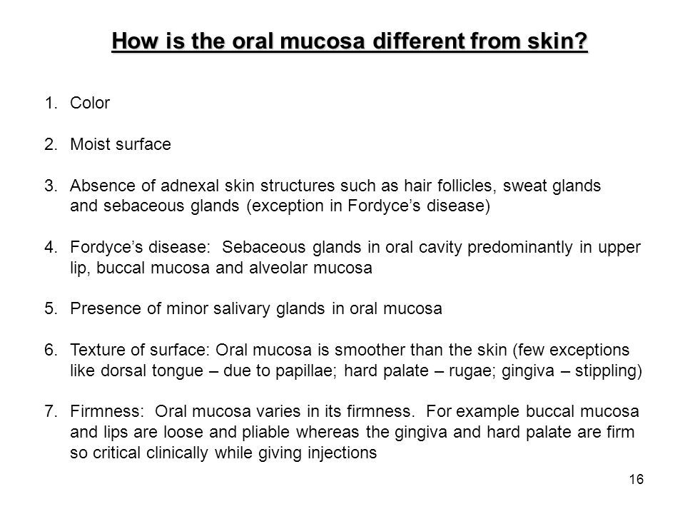 How is the oral mucosa different from skin