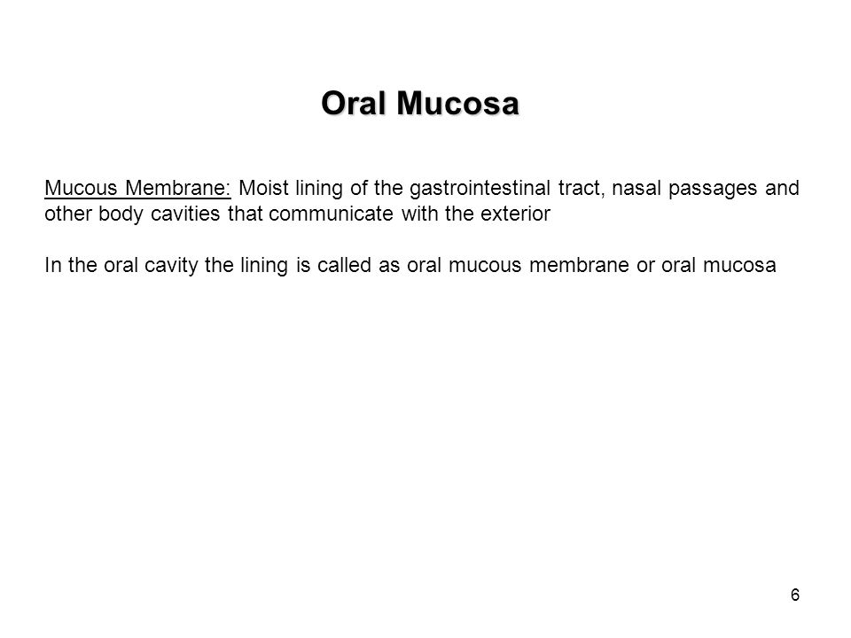 Oral Mucosa Mucous Membrane: Moist lining of the gastrointestinal tract, nasal passages and. other body cavities that communicate with the exterior.