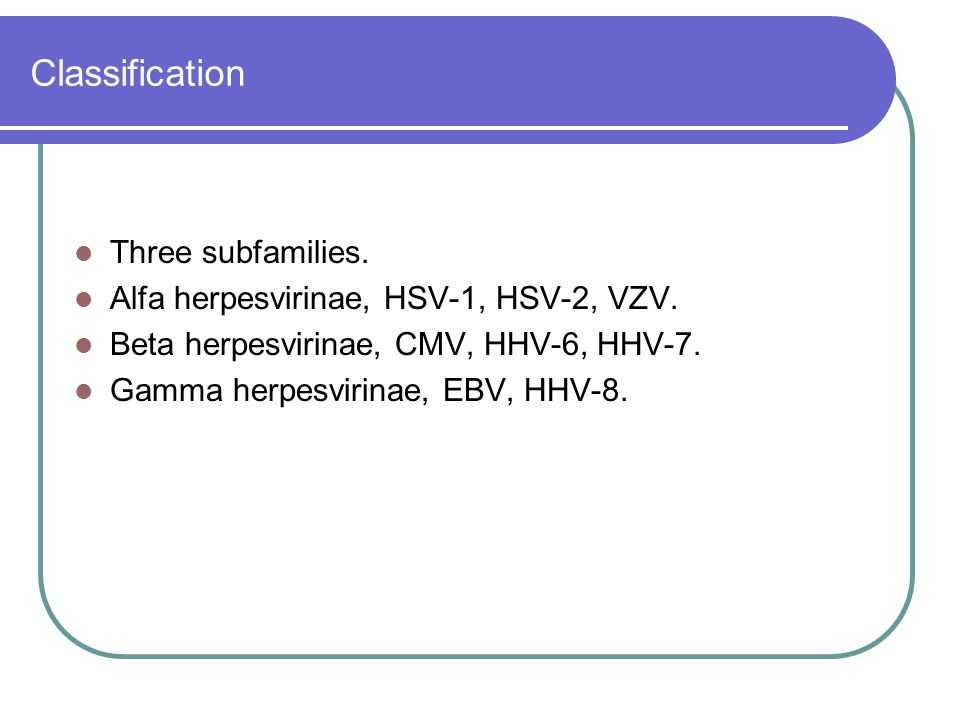 Classification Three subfamilies.