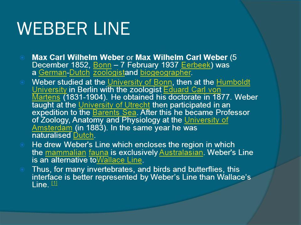 WEBBER LINE
