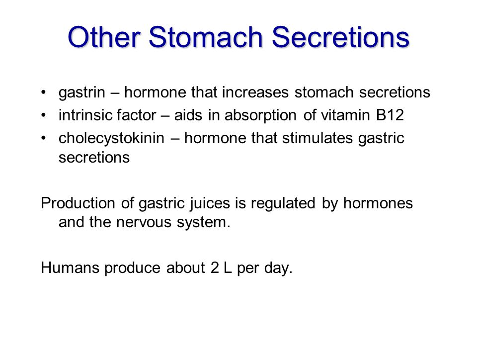 Other Stomach Secretions