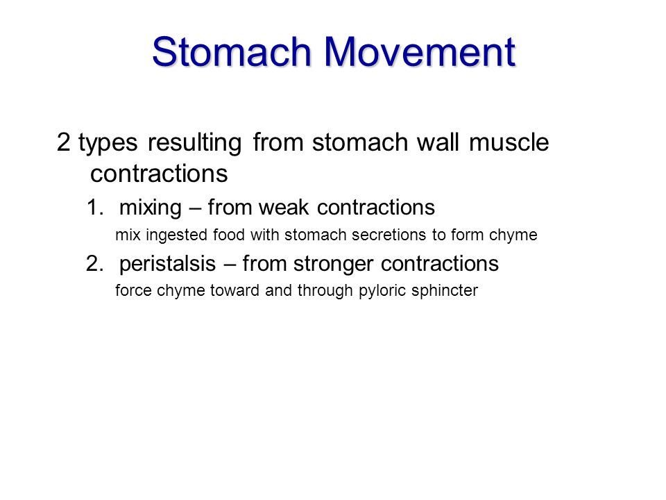 Stomach Movement 2 types resulting from stomach wall muscle contractions. mixing – from weak contractions.
