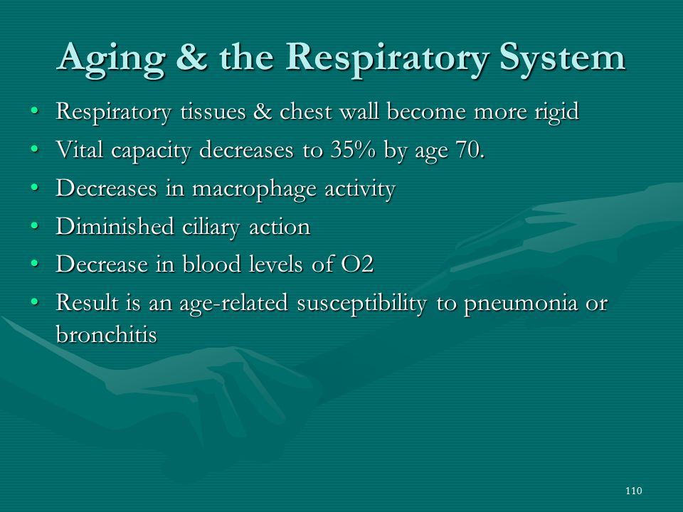 Aging & the Respiratory System