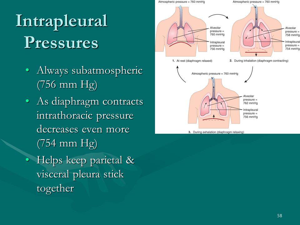 Intrapleural Pressures