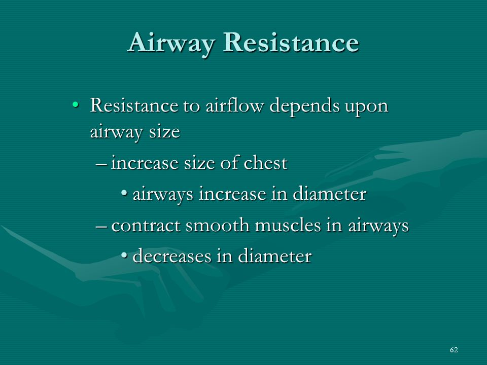 Airway Resistance Resistance to airflow depends upon airway size