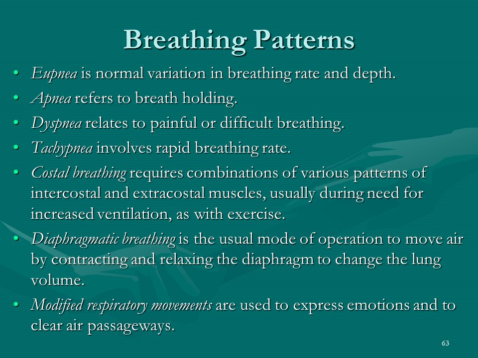 Breathing Patterns Eupnea is normal variation in breathing rate and depth. Apnea refers to breath holding.
