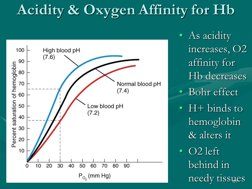 Acidity & Oxygen Affinity for Hb