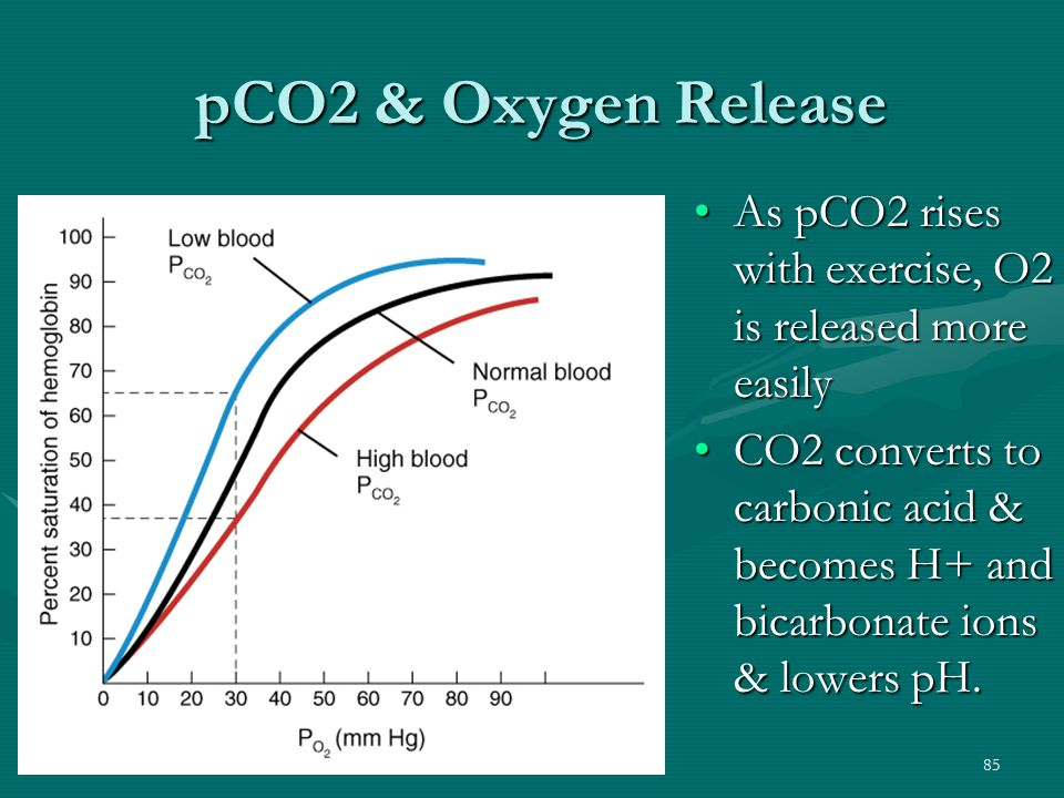pCO2 & Oxygen Release As pCO2 rises with exercise, O2 is released more easily.