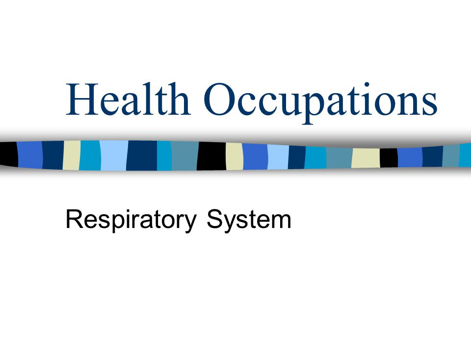 Health Occupations Respiratory System