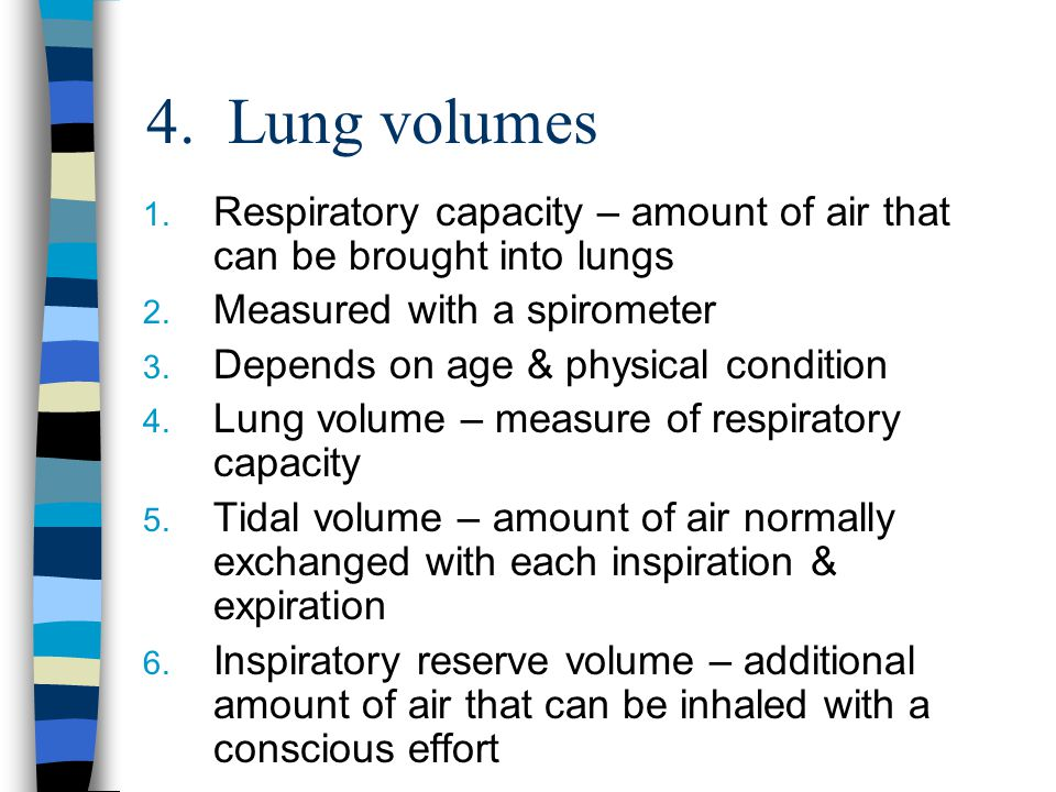 4. Lung volumes Respiratory capacity – amount of air that can be brought into lungs. Measured with a spirometer.