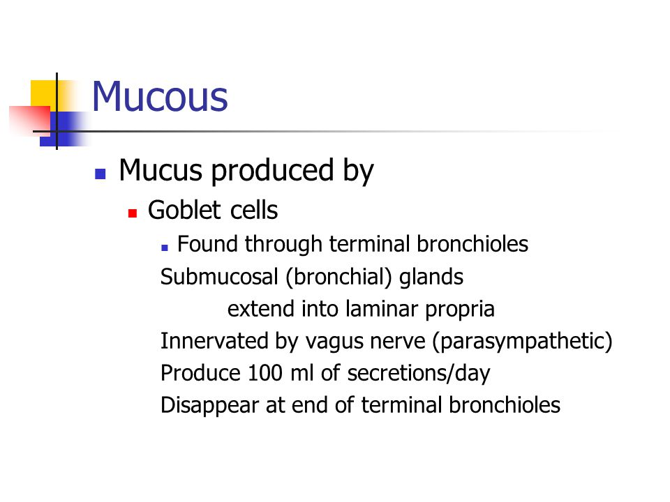 Mucous Mucus produced by Goblet cells