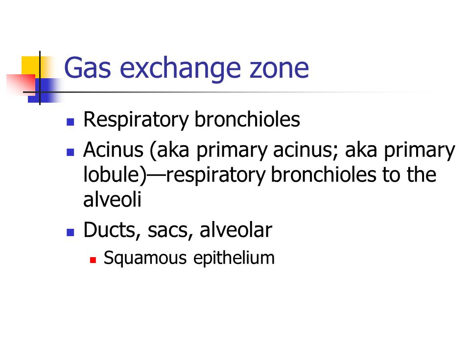 Gas exchange zone Respiratory bronchioles