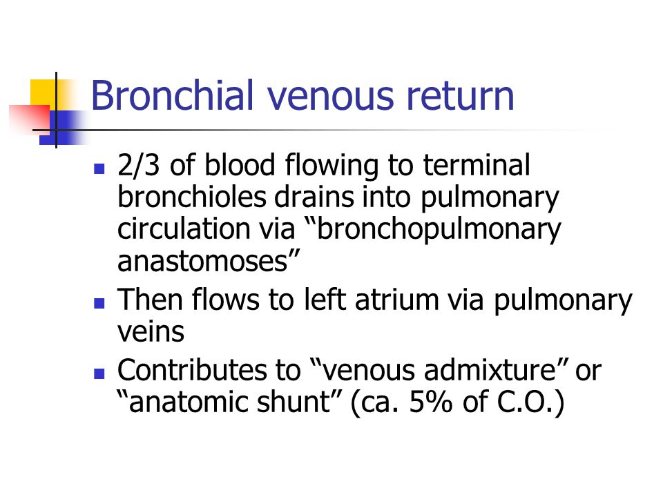 Bronchial venous return