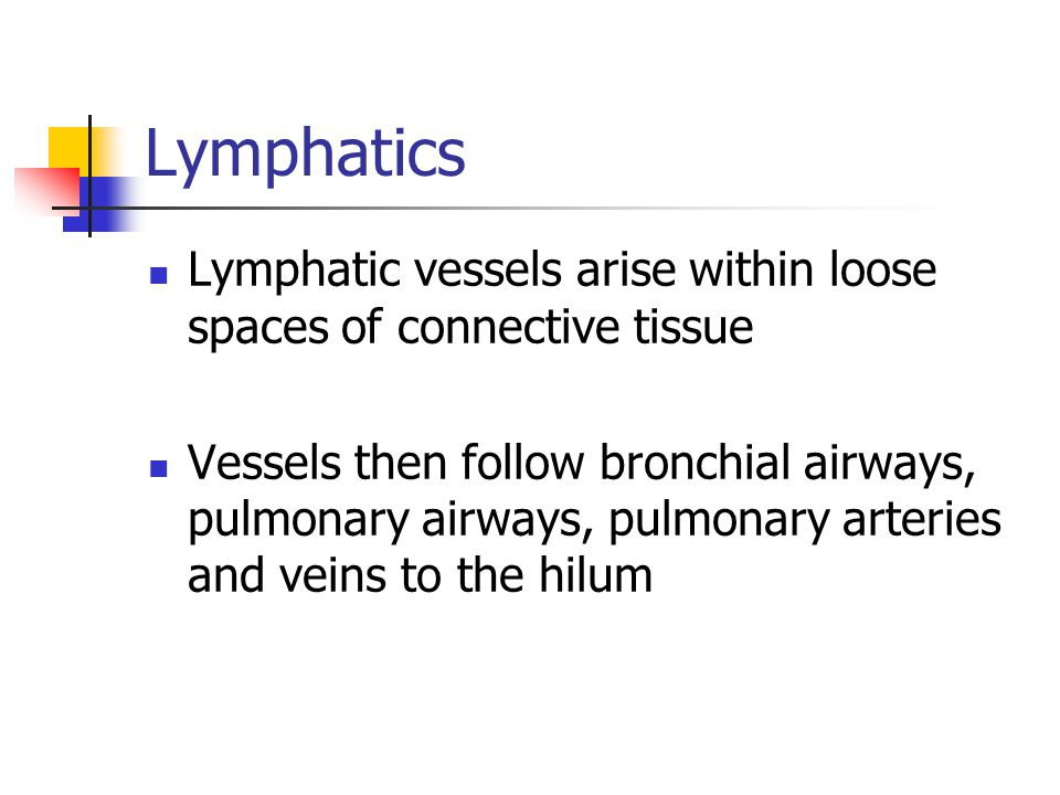 Lymphatics Lymphatic vessels arise within loose spaces of connective tissue.