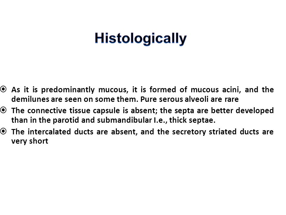 Histologically As it is predominantly mucous, it is formed of mucous acini, and the demilunes are seen on some them. Pure serous alveoli are rare.