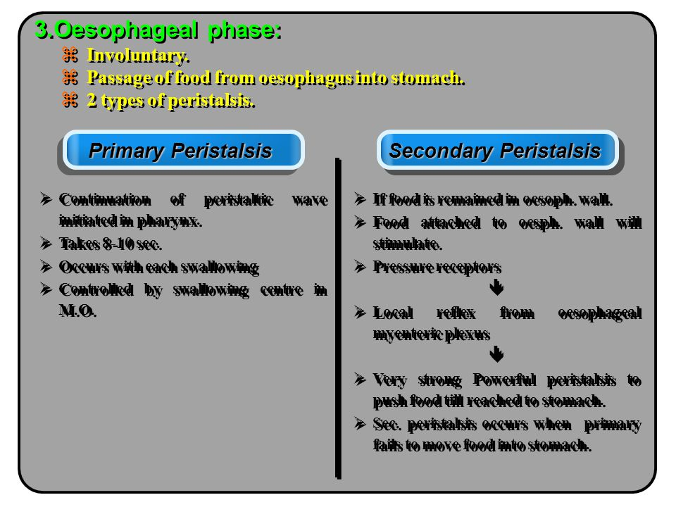 Secondary Peristalsis