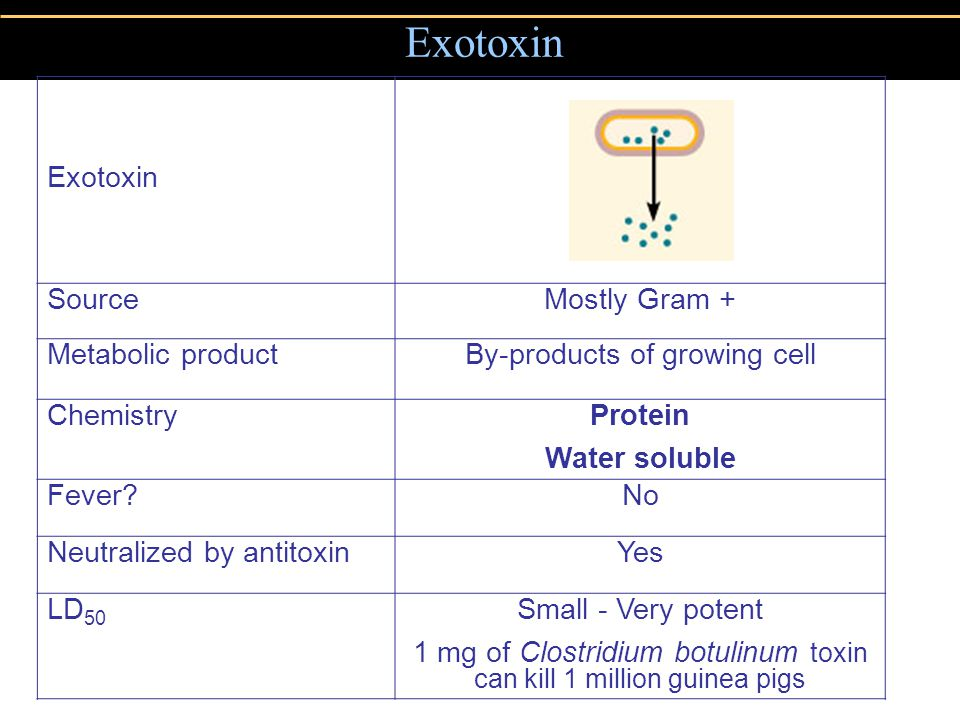 Exotoxin Exotoxin Source Mostly Gram + Metabolic product