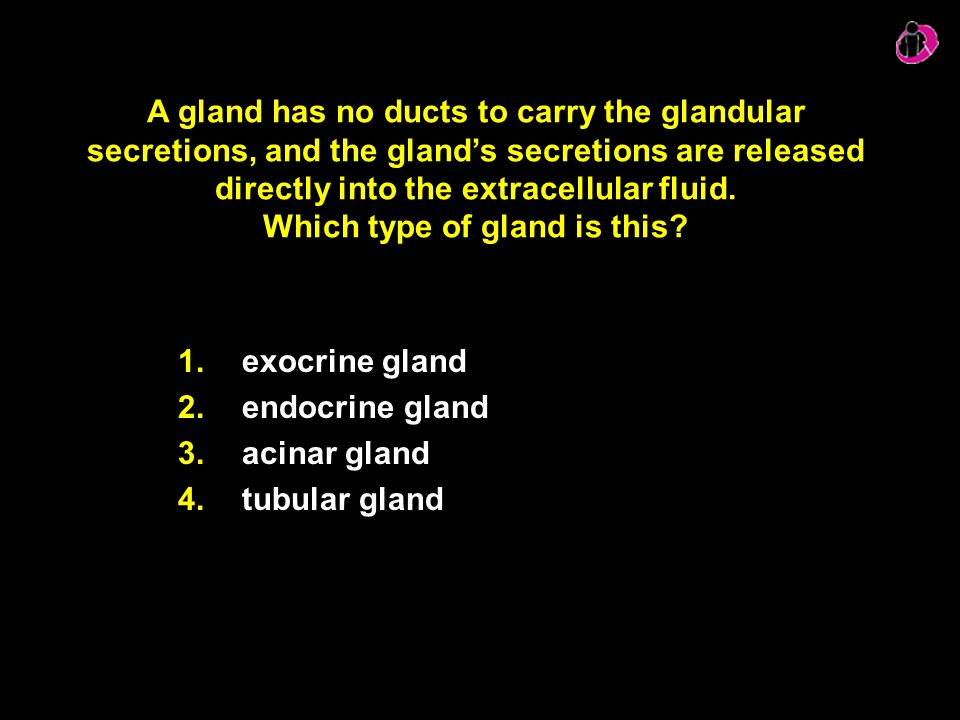 A gland has no ducts to carry the glandular secretions, and the gland's secretions are released directly into the extracellular fluid. Which type of gland is this