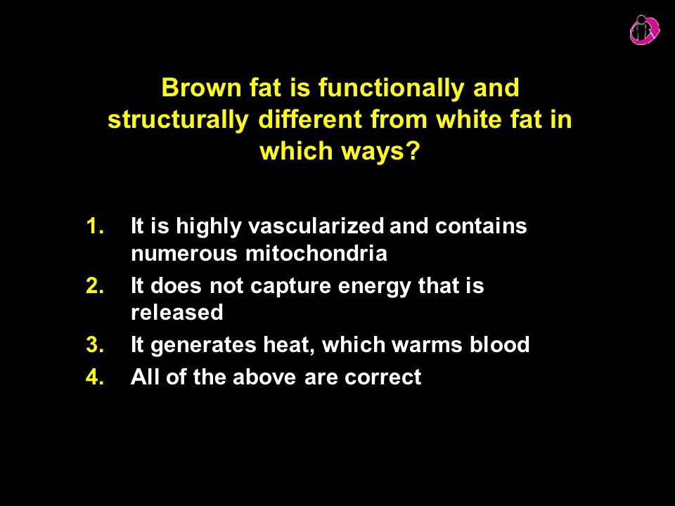 Brown fat is functionally and structurally different from white fat in which ways