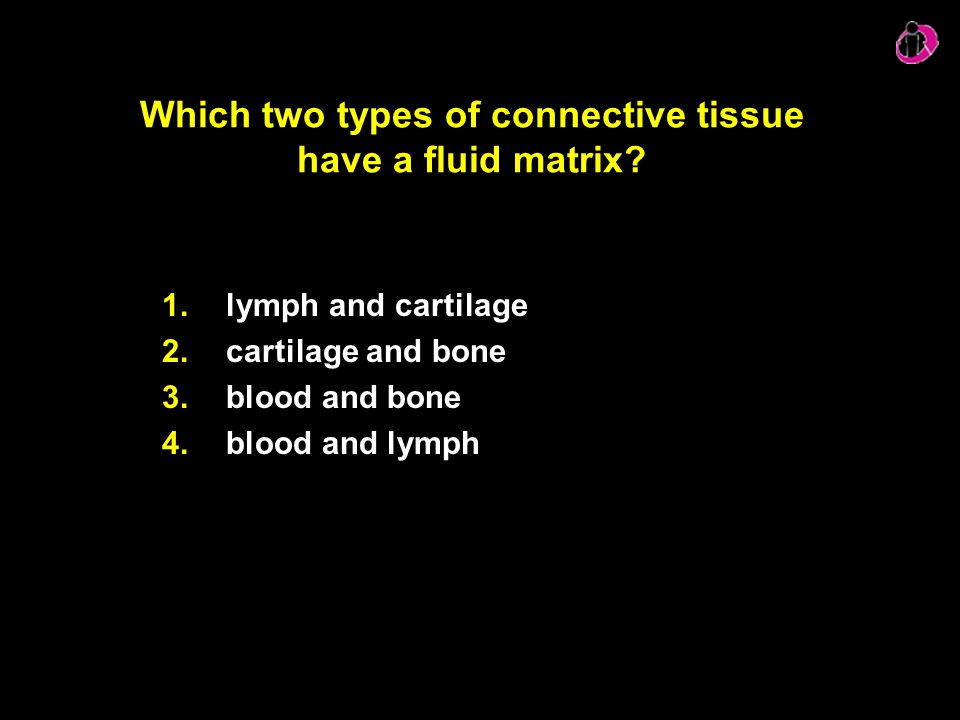 Which two types of connective tissue have a fluid matrix