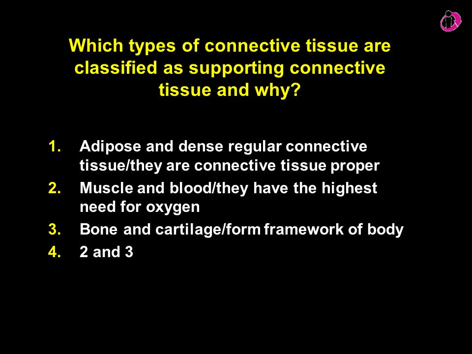 Which types of connective tissue are classified as supporting connective tissue and why