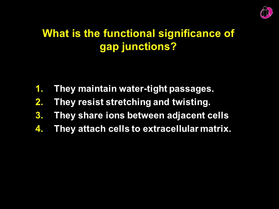 What is the functional significance of gap junctions
