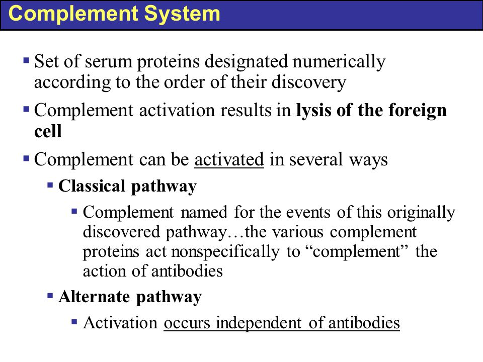 Complement System Set of serum proteins designated numerically according to the order of their discovery.