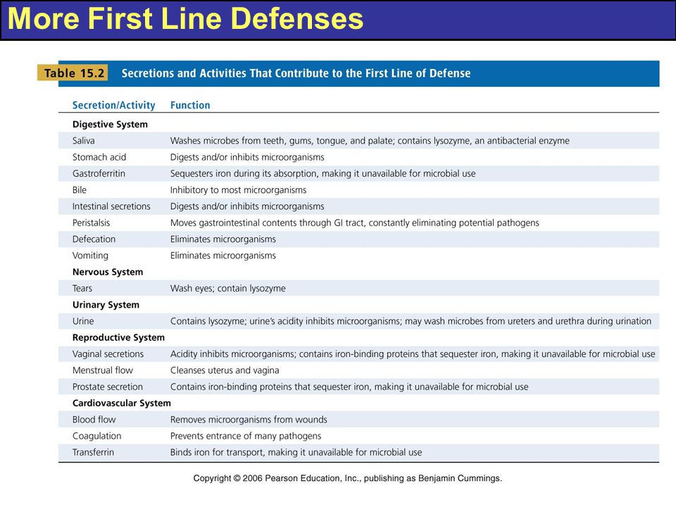 More First Line Defenses