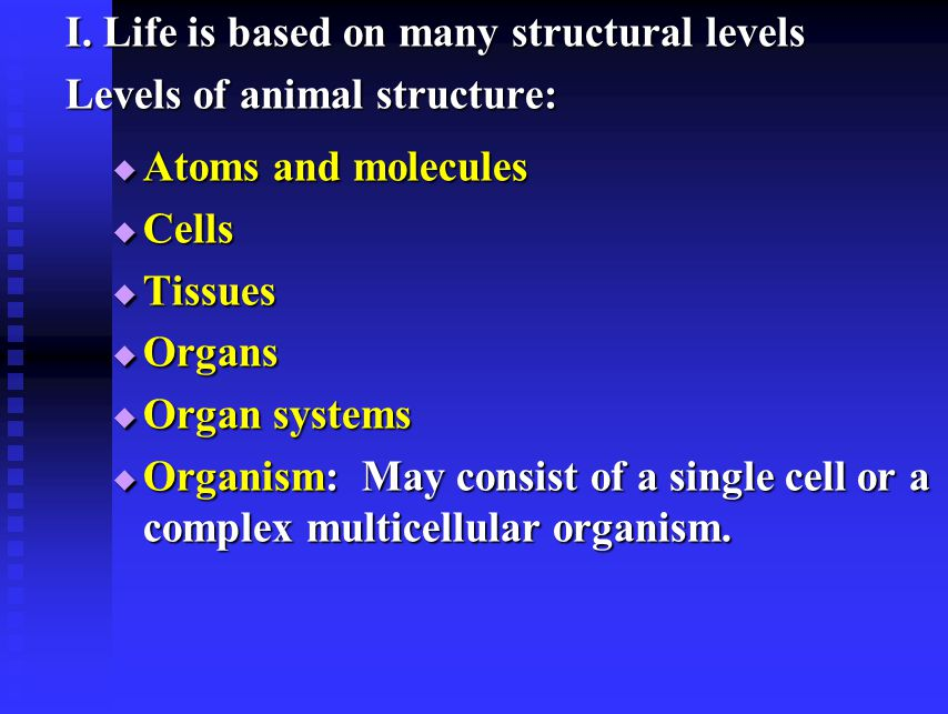 I. Life is based on many structural levels