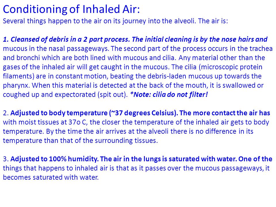 Conditioning of Inhaled Air: