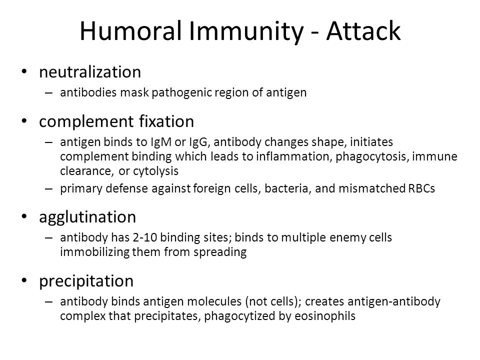 Humoral Immunity - Attack