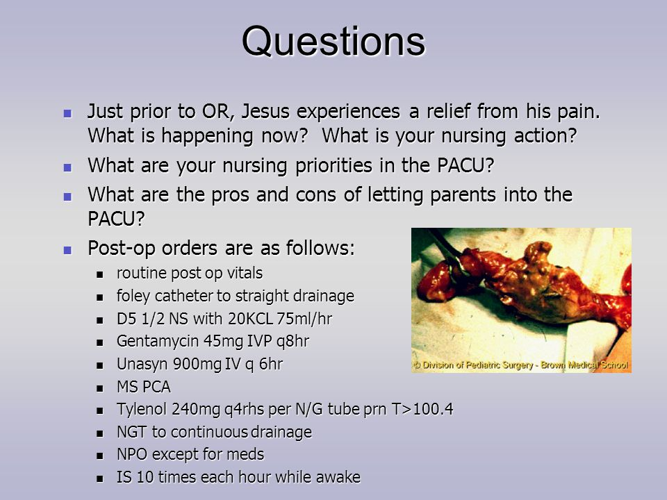 Questions Just prior to OR, Jesus experiences a relief from his pain. What is happening now What is your nursing action