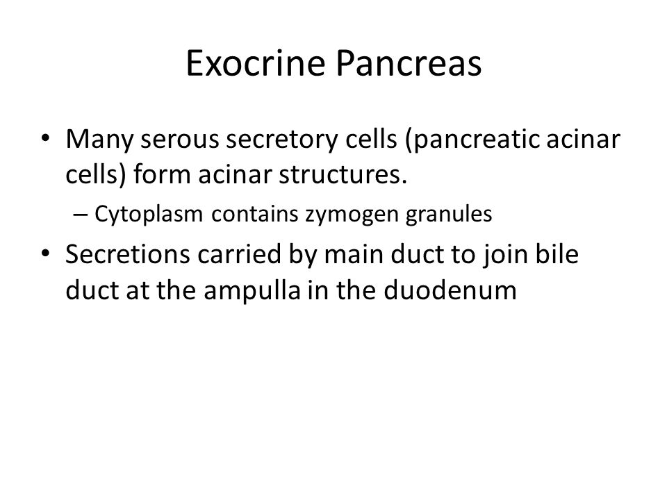 Exocrine Pancreas Many serous secretory cells (pancreatic acinar cells) form acinar structures. Cytoplasm contains zymogen granules.