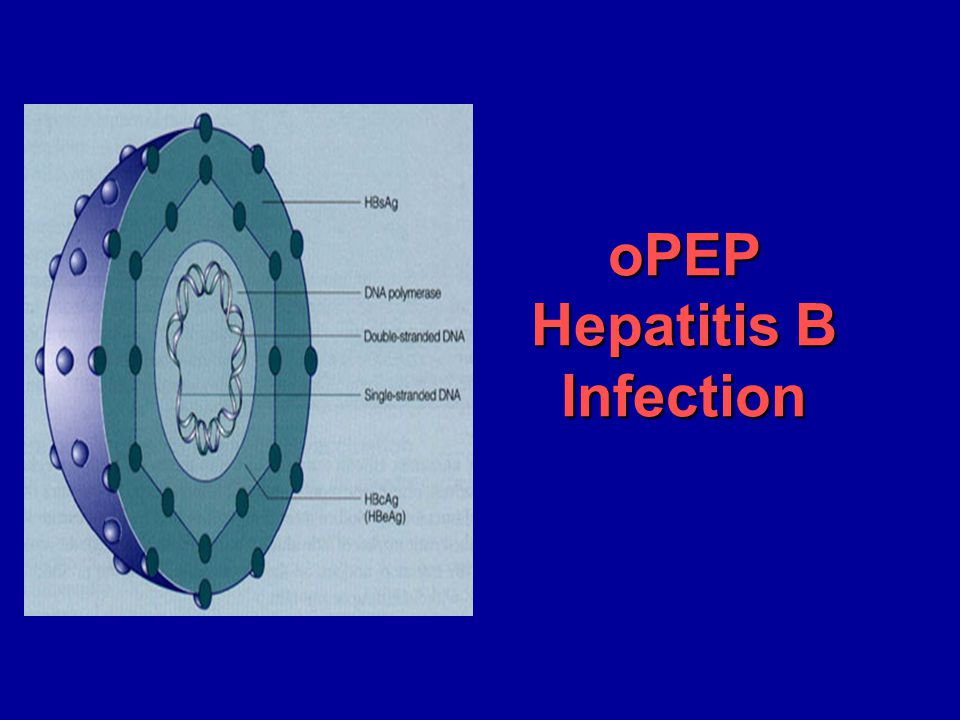oPEP Hepatitis B Infection