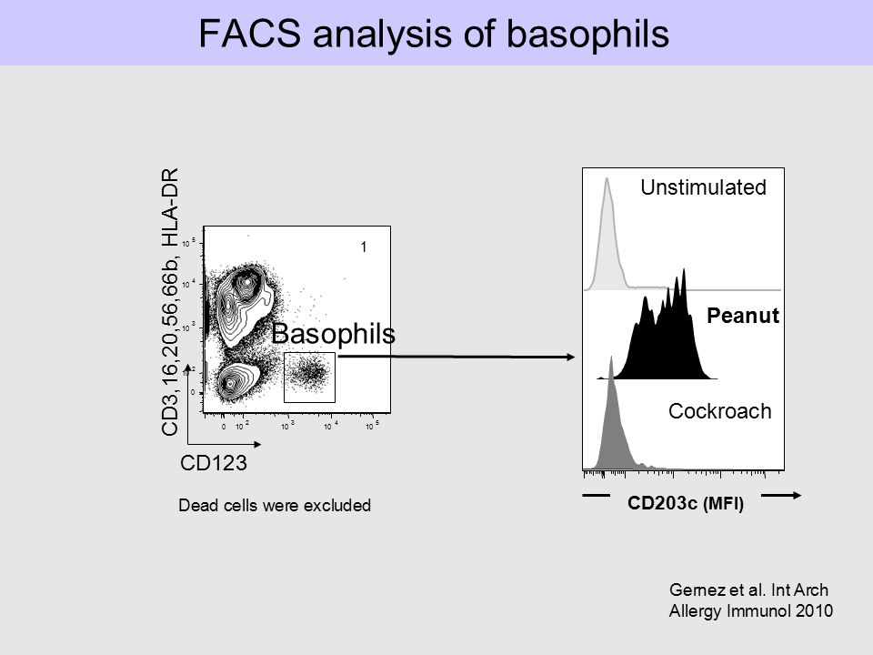 FACS analysis of basophils