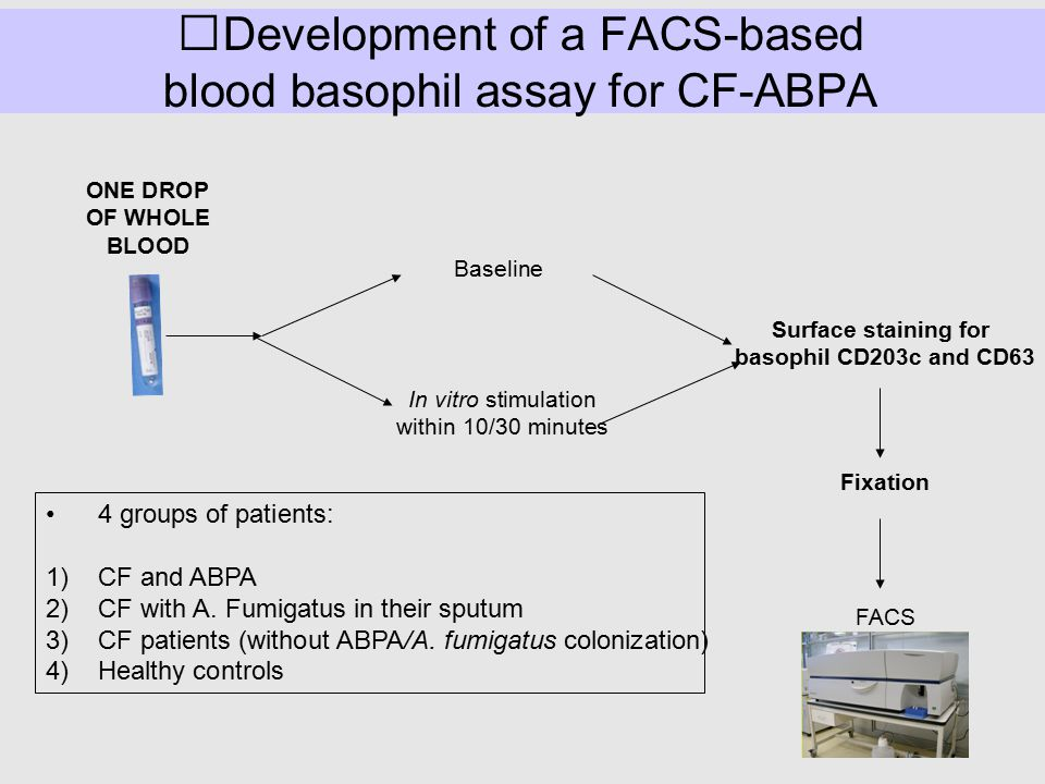 Development of a FACS-based blood basophil assay for CF-ABPA