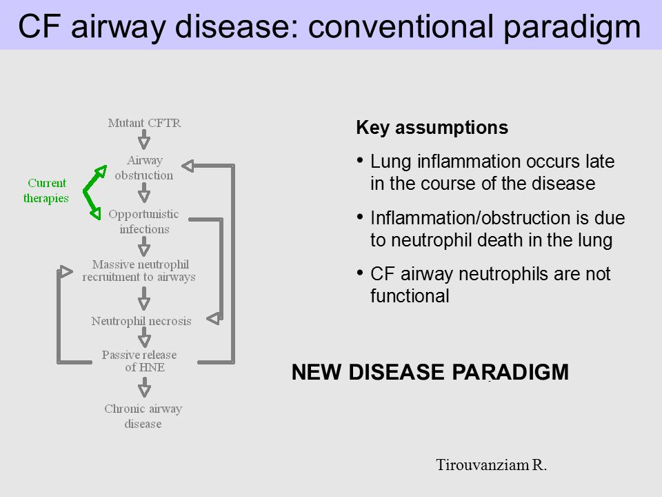 CF airway disease: conventional paradigm