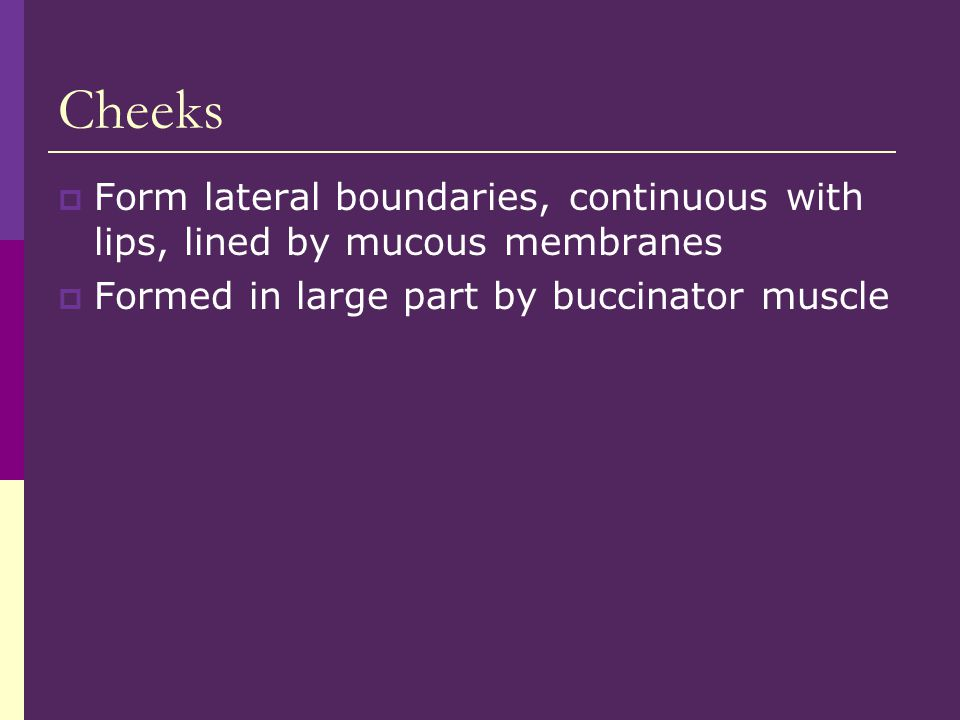 Cheeks Form lateral boundaries, continuous with lips, lined by mucous membranes.