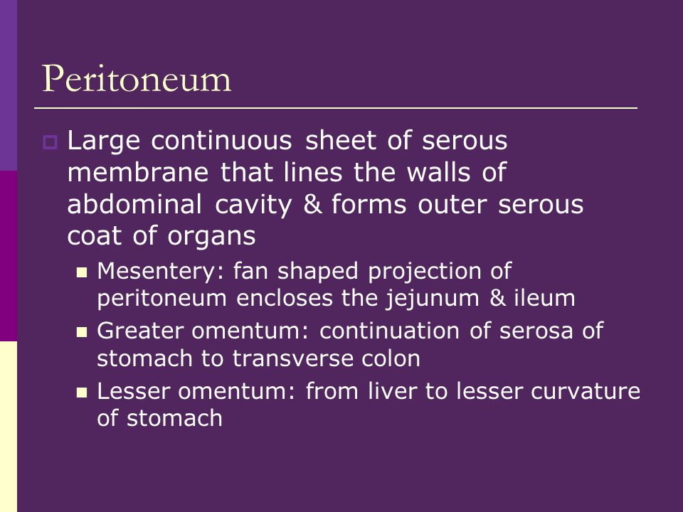 Peritoneum Large continuous sheet of serous membrane that lines the walls of abdominal cavity & forms outer serous coat of organs.